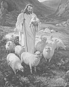 BIBLE PRONUNCIATION-THE GOOD  SHEPHERD